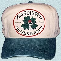Tan Ginseng hat